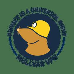 Mullvad VPN 2020.7 Crack + Activation Code Free Download